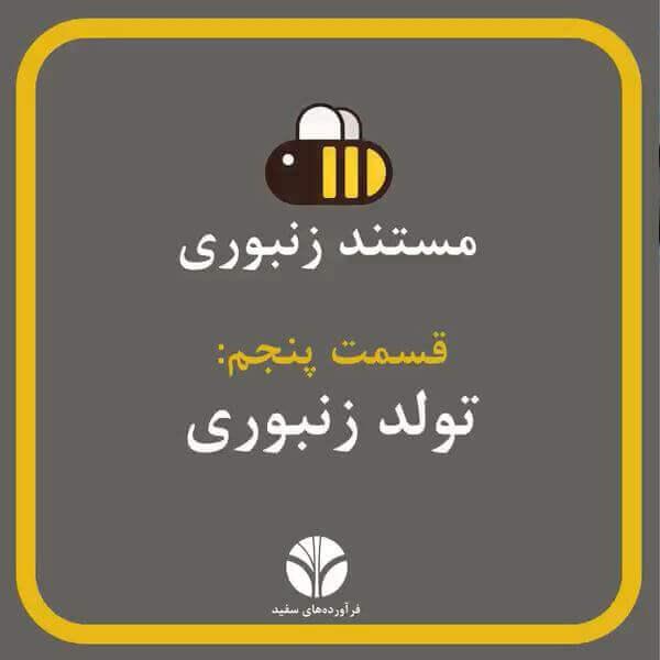 تولد زنبور عسل | مستند زنبورانه | قسمت 5 | مراحل دگردیسی زنبور عسل