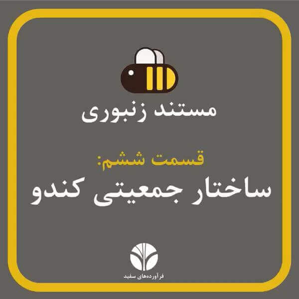 ساختار جمعیتی کندو | مستند زنبورانه | قسمت 6 | انواع زنبورهای یک کندوی سالم