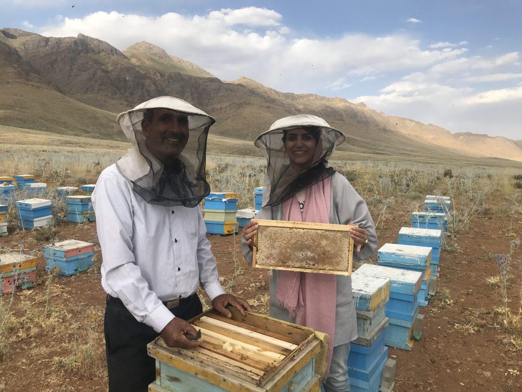 زنبوردار برتر ایران | آقای لسانی