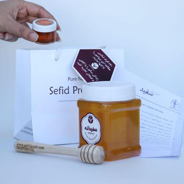 خرید عسل گون گز | قیمت عسل گون گز | خواص عسل گون گز | طبع عسل گون گز | سفیدانه
