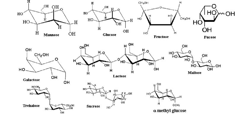 ساختار شیمیایی انواع قند